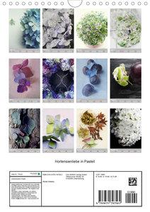 Hortensienliebe in Pastell (Wandkalender 2020 DIN A4 hoch)