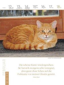 Katzen 2018 Literatur-Wochenkalender