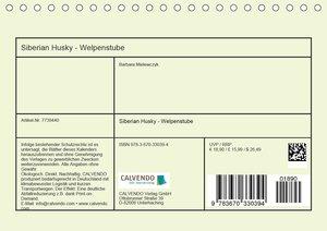 Siberian Husky - Welpenstube