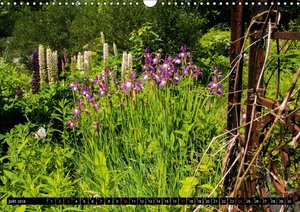 JARDIN SAUVAGE (Calendrier mural 2018 DIN A3 horizontal)
