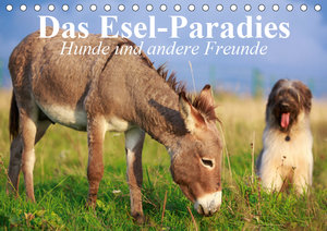 Das Esel-Paradies - Hunde und andere Feunde (Tischkalender 2019