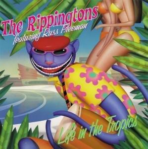 Life In The Tropics