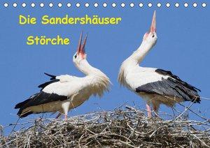 Nordhessens Tierkinder (Wandkalender 2021 DIN A4 quer)