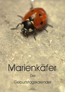 Marienkäfer / 2021 (Wandkalender 2021 DIN A4 quer)