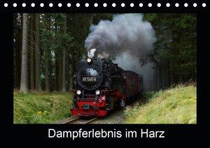 Dampferlebnis im Harz (Wandkalender 2021 DIN A3 quer)