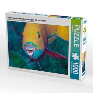 CALVENDO Puzzle Nemo, wie auf Samt gebettet 1000 Teile Lege-Größ