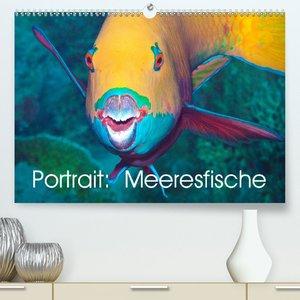 Portraitaufnahmen - Fische (Premium, hochwertiger DIN A2 Wandkal