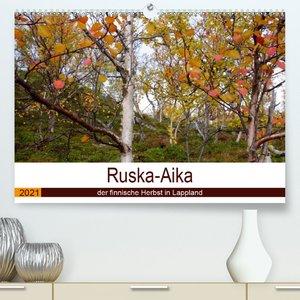Ruska-Aika - der finnische Herbst in Lappland (Wandkalender 2021