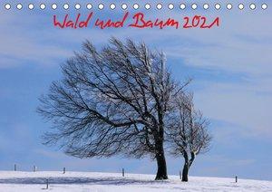 Seerosen 2021 - Familienplaner hoch (Wandkalender 2021 , 21 cm x