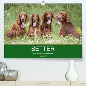 Border Collie - Bunt und clever! (Premium, hochwertiger DIN A2 W