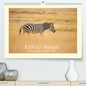 Kenias erstaunliche Tierwelt (Premium, hochwertiger DIN A2 Wandk