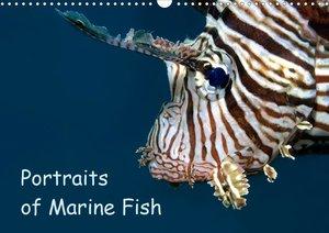 Portraits of Marine Fish (Wall Calendar 2021 DIN A4 Landscape)