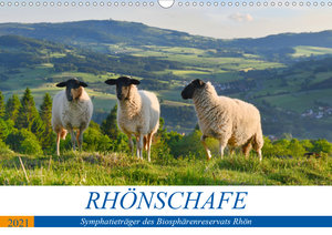 Rhönschafe - Symphatieträger des Biosphärenreservats Rhön (Tisch