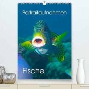 Portraitaufnahmen - Fische (Tischkalender 2021 DIN A5 hoch)
