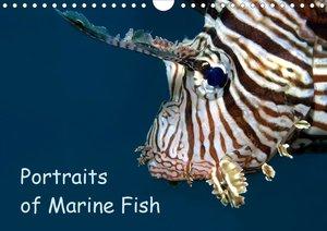 Portraits of Marine Fish (Wall Calendar 2021 DIN A3 Landscape)