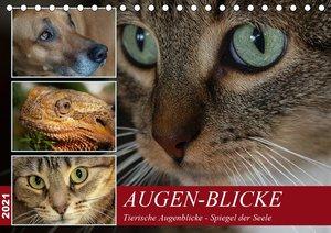 Meißendorfer Teiche - Kleine Lebewesen (Wandkalender 2021 DIN A3