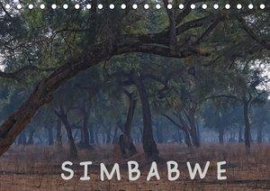 Bäume im Taunus - Jahreszyklus (Wandkalender 2021 DIN A4 quer)