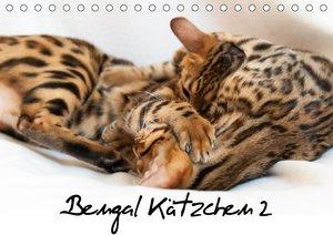 Bengal Kätzchen 2 (Tischkalender 2021 DIN A5 quer)