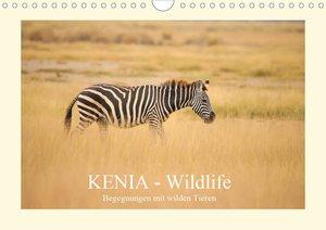 Kenias wundervolle Vogelwelt (Wandkalender 2021 DIN A3 quer)